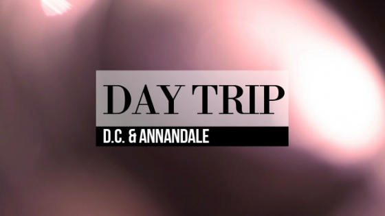 Day Trip to D.C. & Annandale, Virginia